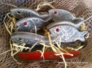 10_6 sardines grises boite sardine vintage