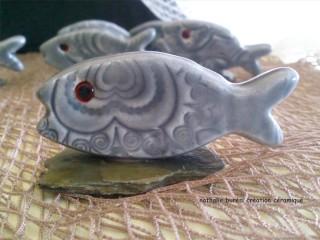 sardine grise détail