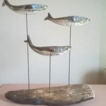 Grandes sardines sur bois flotté brûlé